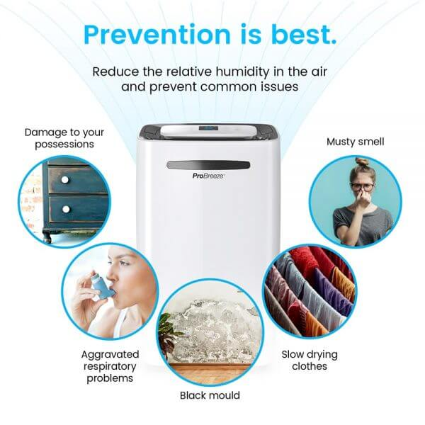 dehumidifier prevention benefits