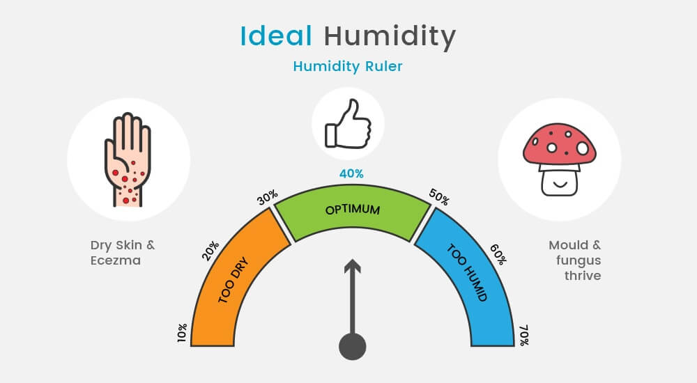 Ideal Humidity For Bedroom.13 Step Guide To Buying A Dehumidifier In 2019 Probreeze